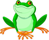 Grenouille illustration stock