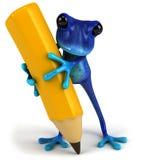 Grenouille bleue Photo libre de droits