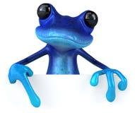 Grenouille bleue Photo stock