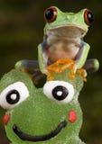 Grenouille contre la grenouille Photo stock