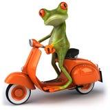 Grenouille dans le scooter Images libres de droits