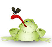Grenouille de dessin animé Photographie stock