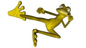 Grenouille de karaté ou grenouille de fu de kung Photographie stock