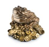 Grenouille de Moneybox Images stock