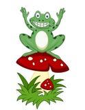 Grenouille drôle se reposant sur le champignon de couche Image libre de droits