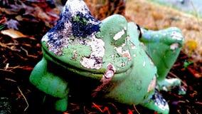 Grenouille en céramique Images stock