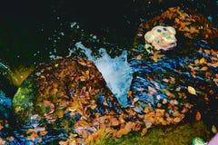 Grenouille en pierre par un ruisseau Images stock