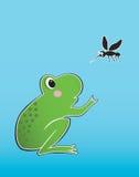 Grenouille et moustique Photos stock