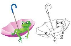 Grenouille et parapluie Photos libres de droits