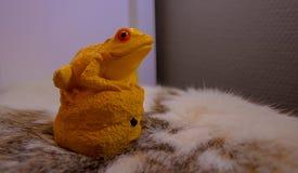Grenouille jaune sur une fourrure images stock