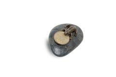 Grenouille sur une pierre décorative Photo stock