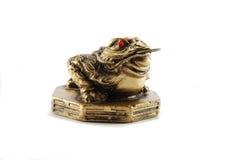 Grenouille-symbole chinois d'argent de Feng Shui de la richesse Photographie stock