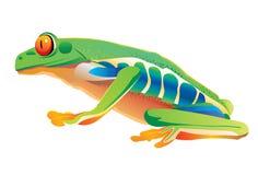 Grenouille-vert Illustration Stock