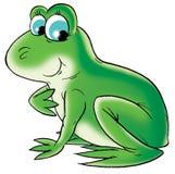 Grenouille verte Photos libres de droits