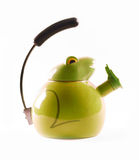 Grenouille verte de bouilloire Photo libre de droits