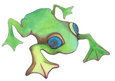 Grenouille verte de dessin animé Photo libre de droits
