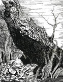 Grenouilles d'arbre dans la forêt Photographie stock