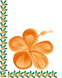 Grens met hibiscusbloem Royalty-vrije Stock Foto's