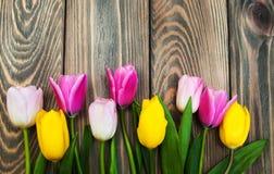 Grens met roze en gele tulpen Royalty-vrije Stock Afbeelding