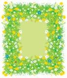 Grens van bloemen en gras Stock Afbeeldingen