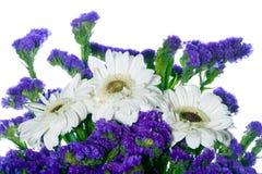 Grens van de lentebloemen Stock Foto