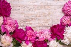 Grens van pioenen op een houten achtergrond met lege ruimte voor tekst Royalty-vrije Stock Fotografie