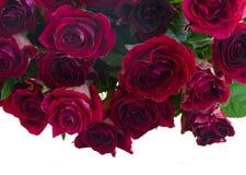 Grens van rode en roze rozen Stock Foto's