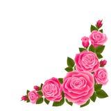 Grens van rozen Stock Afbeeldingen