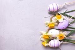Grens van violette eieren en gele gele narcissen of narcissen flowe Royalty-vrije Stock Fotografie