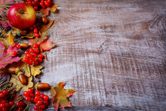 Grens van vruchten en dalingsbladeren op de donkere houten achtergrond Stock Foto's