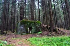 Grensgebied een bunker van Wereldoorlog II stock foto's