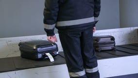 Grenshond op een transportband bij de luchthaven stock videobeelden
