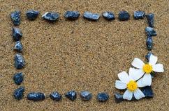 Grenskader met grint en witte bloem Stock Afbeelding
