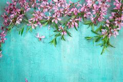 Grenze von blühenden Mandeln auf Türkishintergrund Frühjahr-Konzept Lizenzfreie Stockfotos