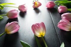 Grenze von den hellen rosa Tulpen blüht auf schwarzem hölzernem backgroun Lizenzfreie Stockfotos