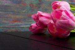 Grenze von den hellen rosa Tulpen blüht auf schwarzem hölzernem Hintergrund Stockbild