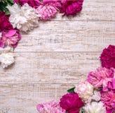 Grenze von Pfingstrosen auf einem hölzernen Hintergrund mit leerem Raum für Text Blumenauslegung? Hintergrund, Hintergrund, Ausle Stockbild