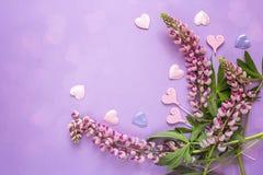 Grenze von rosa Lupines und von dekorativen Herzen auf einem violetten backgro Stockfotografie