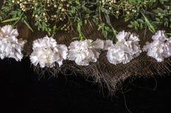 Grenze von weißen Gartennelken mit Zweigen des Buchsbaumes auf dem verwobenen liegenden schwarzen Sperrholz des Strohs Lizenzfreies Stockfoto