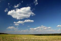 Grenzenloses Feld Stockbild