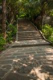 Grenzinsel Lingshui-Kokosnussspur Lizenzfreies Stockbild