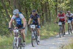 Grenzrennen (Grenserittet) 2014 Lizenzfreies Stockbild
