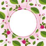 Grenzschablone mit rosa Rosen Stockfoto