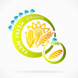 Grões orgânicas Imagem de Stock Royalty Free