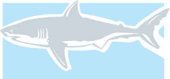 Greta White Clean. Clean graphic image of a great white shark royalty free illustration