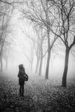 Gretel dans les bois Photos libres de droits