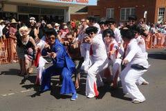 Greve de Elvises a pose fotografia de stock royalty free