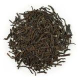 Grevegrå färger för svart te Royaltyfri Bild