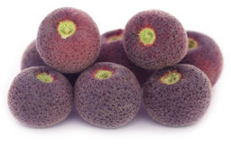 Grewia asiatica or Falsa fruits of Southeast Asia. Over white background Stock Images
