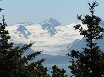 grewingk ледника Стоковые Фотографии RF